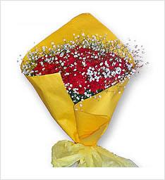 温馨亲情鲜花一束(红色康乃馨50枝+满天星1扎)