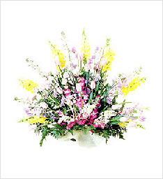 好人一生平安鲜花一束(紫罗兰14支+泰国兰8支+康乃馨11支+拍草若干,勿忘我,情人草点缀。)