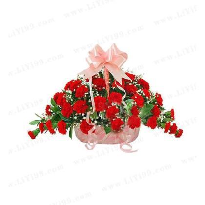 红色康乃馨39支+栀子叶+满天星