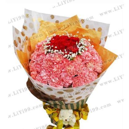 66枝康乃馨花束一束