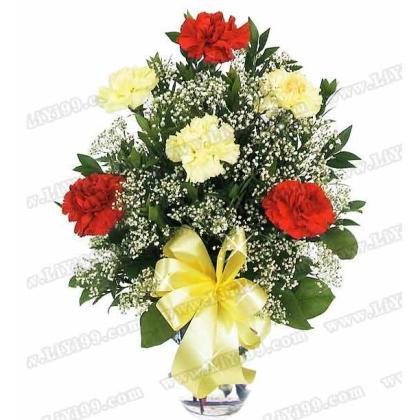 精美瓶装鲜花一束(3枝黄色康乃馨+3枝红色康乃馨)