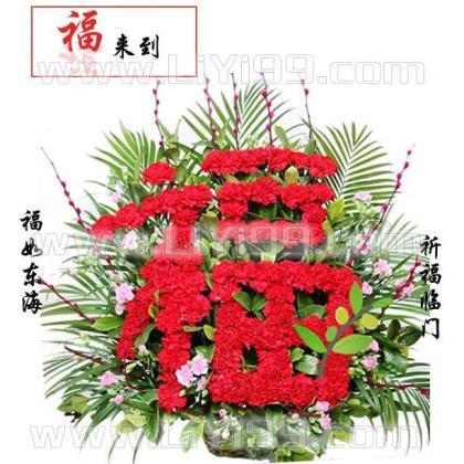 80朵红色康乃馨鲜花一束