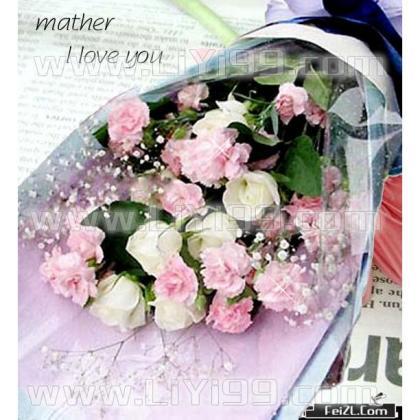 6朵白玫瑰+19朵康乃馨鲜花一束