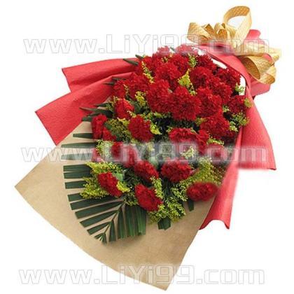 33枝红色康乃馨一束
