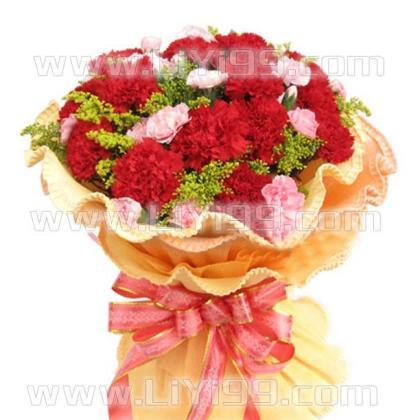 11枝红色康乃馨鲜花一束