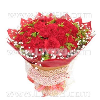 50枝康乃馨鲜花一束