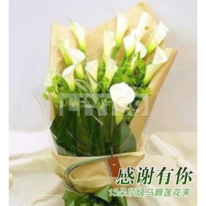 13朵顶级马蹄莲花束