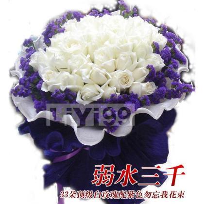 33朵顶级白玫瑰配紫色勿忘我花束