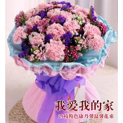 29枝粉色康乃馨温馨花束