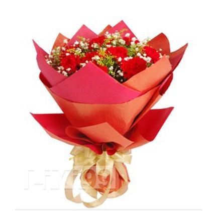 10朵顶级红色康乃馨,黄莺满天星点缀丰满