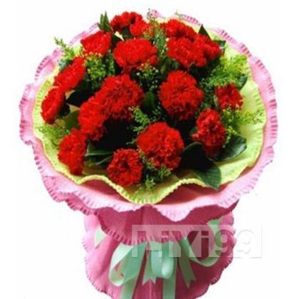33朵顶级红色康乃馨,黄莺配叶丰满