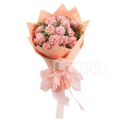 11朵顶级粉色康乃馨,满天星点缀