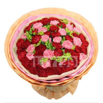 20枝粉色康乃馨20枝红色康乃馨,绿叶点缀丰满