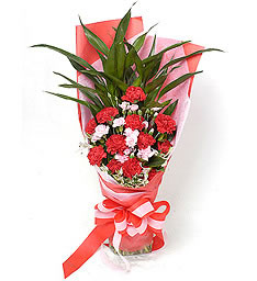 红色康乃馨12枝,富贵竹3枝;粉多头康,小百合适量