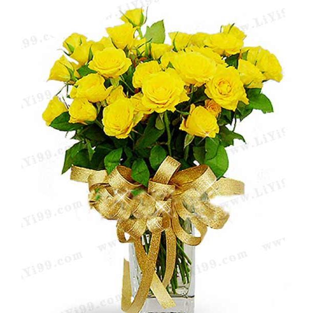 黄玫瑰鲜花一束 道歉礼物