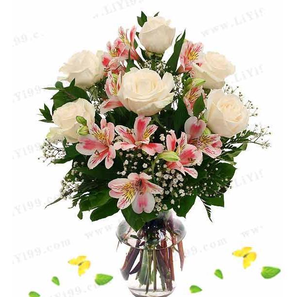 玫瑰花瓶鲜花一束(6枝白玫瑰 1扎水仙百合)