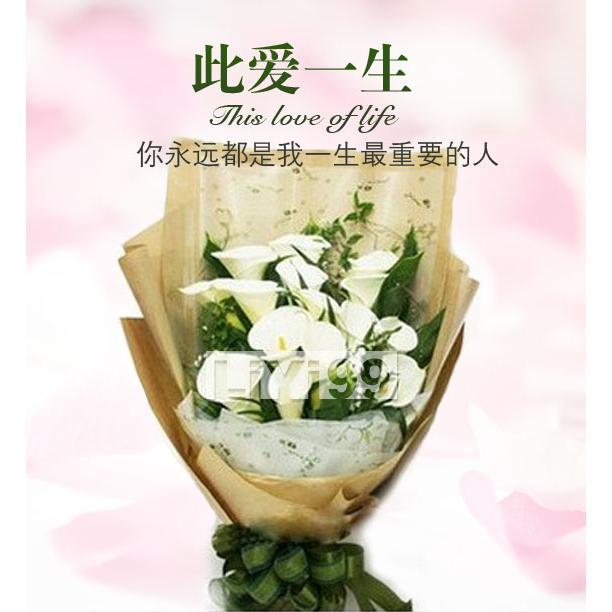 21枝典雅 马蹄莲 花束