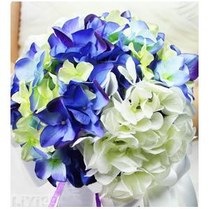 鲜花图片素材蓝白